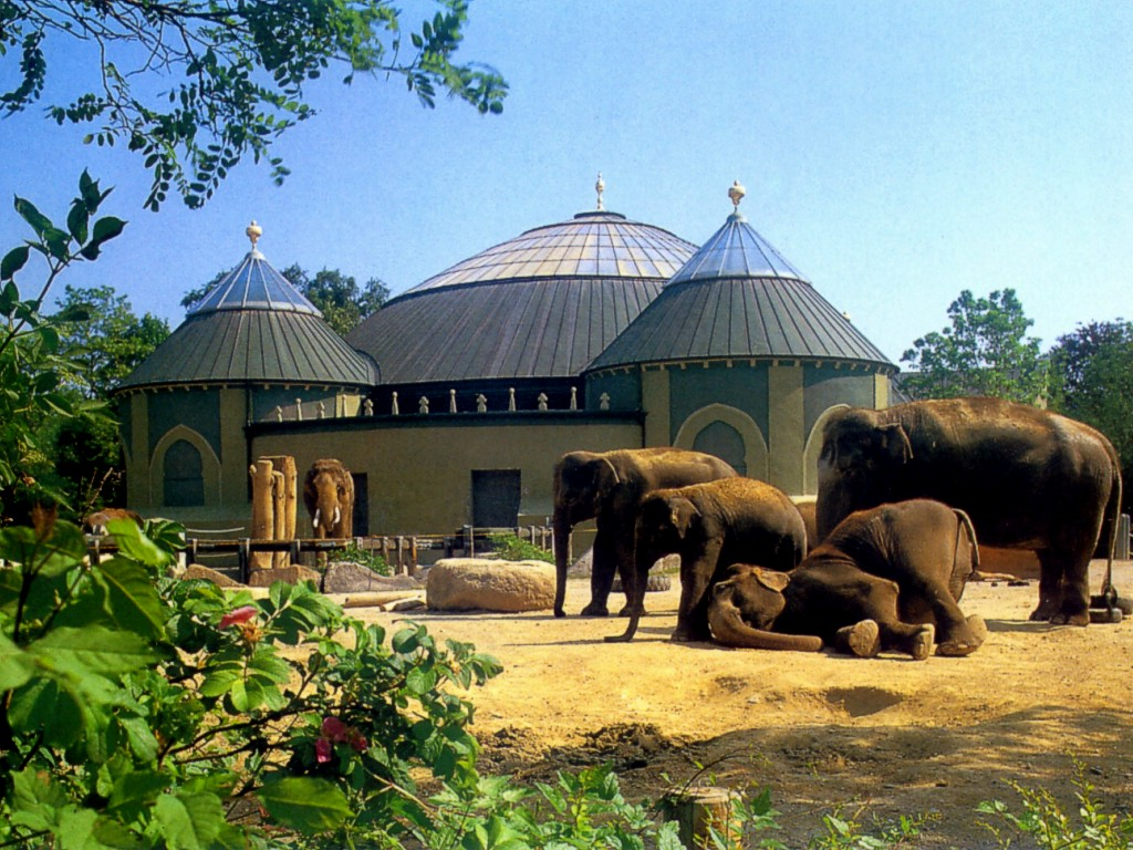حديقة حيوانات هيلابرون