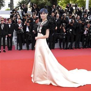 6 من اجمل الفساتين الطويلة التي أطلت بها النجمات في مهرجان كان السينمائي